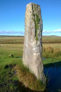 Stone Row - Drizzlecombe