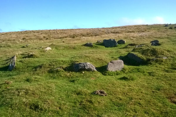 Bronze Age Hut Circle - Drizzlecombe