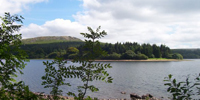Burrator Reservoir walk